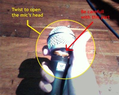 Open the head